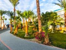Sharm el Sheikh Egypten - December 31, 2018: Tropiska lyxiga Sultan Gardens Resort på Röda havetstranden royaltyfri foto