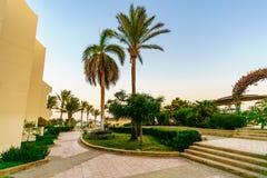 Sharm el Sheikh Egypten Oktober 2017 byggnader och flamenco för områdeshotellsemesterort fotografering för bildbyråer