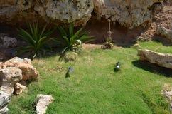 Sharm El Sheikh Stock Photography