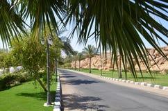 Sharm El Sheikh Royalty Free Stock Image