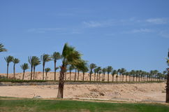 Sharm El Sheikh Stock Photo
