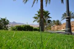 Sharm El Sheikh Stock Photos