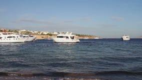 Sharm el-Sheikh, Sharks Bay, Egypt many beautiful white yacht. Many beautiful white yacht on the shore on the Red Sea, is seen behind the Tiran Island,Sharm el stock video