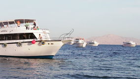 Sharm el-Sheikh, Sharks Bay, Egypt - November 30, 2016: many beautiful white yacht on the shore. Sharm el-Sheikh, Sharks Bay, Egypt - November 30, 2016:many stock video footage