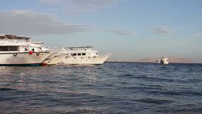 Sharm el-Sheikh, Sharks Bay, Egypt - November 30, 2016: many beautiful white yacht on the shore stock video