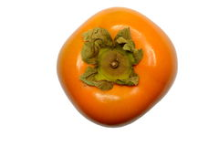 Sharon persimon - frukt, Royaltyfri Foto
