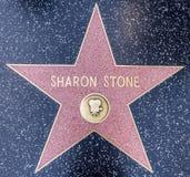 sharon sten fotografering för bildbyråer