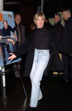 Sharon Stone, ο καλλιτέχνης Στοκ Εικόνες