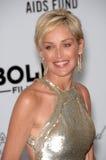 Sharon Stone Imagen de archivo libre de regalías