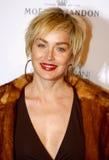 Sharon Stone imagem de stock royalty free
