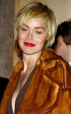 Sharon Stone Photos stock