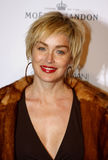 Sharon Stone. Attends the Scandinavian Style Mansion held at the Private Residence in Bel Air, California, United States on December 1, 2007 Royalty Free Stock Images