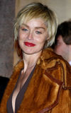 Sharon Stone. Attends the Scandinavian Style Mansion held at the Private Residence in Bel Air, California, United States on December 1, 2007 Royalty Free Stock Image