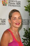 Sharon Stone at the Elizabeth Glaser Foundation's  Stock Images