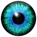 Sharp attractive deep eye texture 3D 19 Royalty Free Stock Photography