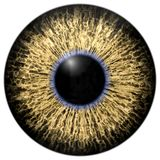 Sharp attractive deep eye texture 3D 13 Royalty Free Stock Photography