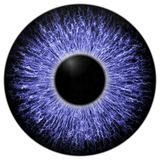 Sharp attractive deep eye texture 3D 12 Stock Image