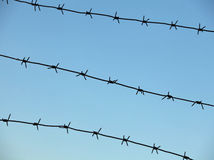 Sharp barbed wire fence Stock Image