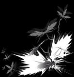 Sharp black flowers. Sharp black and grey flowers on black background Royalty Free Stock Images