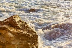 Sharp boulders and rocks glowing in morning sunligt, wet with wave splashing surrounded by foam from wave. At sunrise royalty free stock images