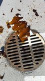 Sharp broken bottle glass by rusty storm drain in parking lot royalty free stock image