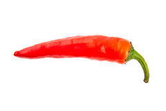 Sharp cayenne Stock Images