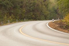 Sharp curve road in forest hill. View of sharp curve road in forest hill royalty free stock image