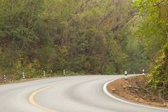 Sharp curve road in forest hill. View of sharp curve road in forest hill royalty free stock images