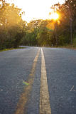 Sharp curve road throgh the forest. At sunset stock images
