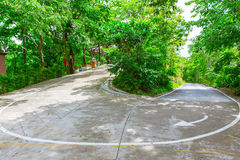 Sharp curve road up hill. In the mountain forest royalty free stock image