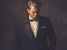 Sharp dressed fashionist wearing jacket Royalty Free Stock Images