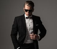 Sharp dressed fashionist wearing suit Royalty Free Stock Photos