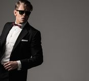 Sharp dressed fashionist wearing suit Royalty Free Stock Photography
