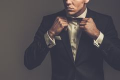 Sharp dressed fashionist wearing suit. Sharp dressed man wearing jacket and bow tie Stock Images