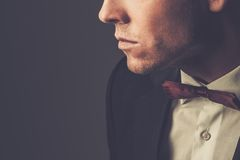 Sharp dressed fashionist wearing suit. Sharp dressed man wearing jacket and bow tie Stock Image