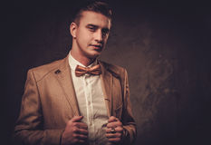 Sharp dressed man wearing jacket and bow tie Royalty Free Stock Photo