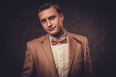 Sharp dressed man wearing jacket and bow tie.  Stock Photography