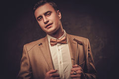 Sharp dressed man wearing jacket and bow tie Stock Photo