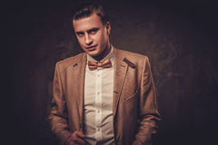 Sharp dressed man wearing jacket and bow tie Royalty Free Stock Photos