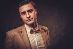 Sharp dressed man wearing jacket and bow tie Royalty Free Stock Images