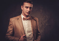 Sharp dressed man wearing jacket and bow tie Stock Photography