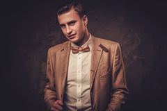 Sharp dressed man wearing jacket and bow tie Royalty Free Stock Image
