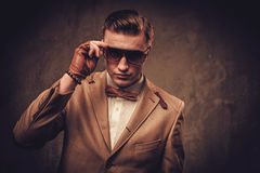 Sharp dressed man wearing jacket and bow tie Royalty Free Stock Photography