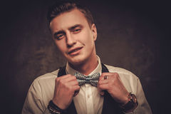 Sharp dressed man wearing waistcoat and bow tie Royalty Free Stock Photography