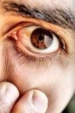 Sharp eye Stock Images