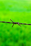 The sharp fence Royalty Free Stock Photography
