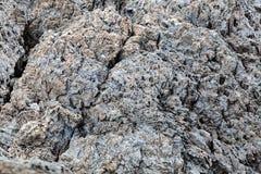 Sharp gray rocks on the beach Stock Photography