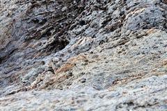 Sharp gray rocks on the beach Stock Images