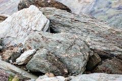 Sharp gray rocks on the beach Stock Photos