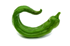 Sharp green pepper isolated on a white background Royalty Free Stock Images
